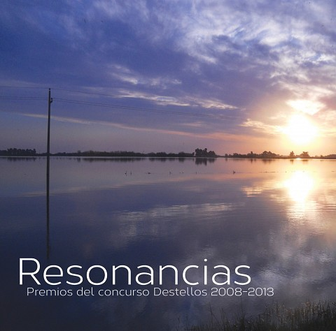 2014destellos-resonancias-cmmas